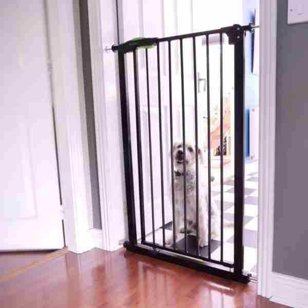 Also great for keeping pets out of the room.